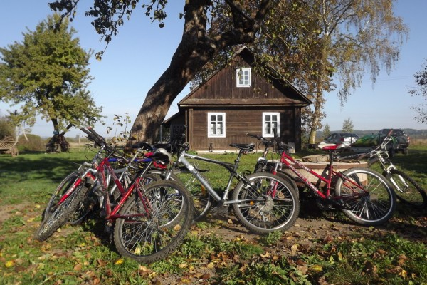 bikes-1024x684