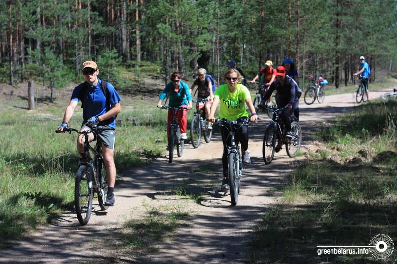 На велосипеде по Налибокской пуще: чем удивит маршрут «Воложинские гостинцы»?